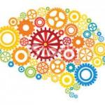 Cerveau et apprentissage : fabuleux réseaux neuronaux