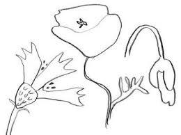Tendresse et amour avec les fleurs