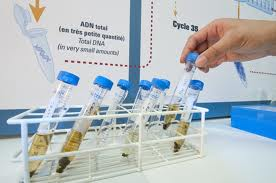 Votre laboratoire personnel