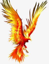 La résilience au bras du Phoenix