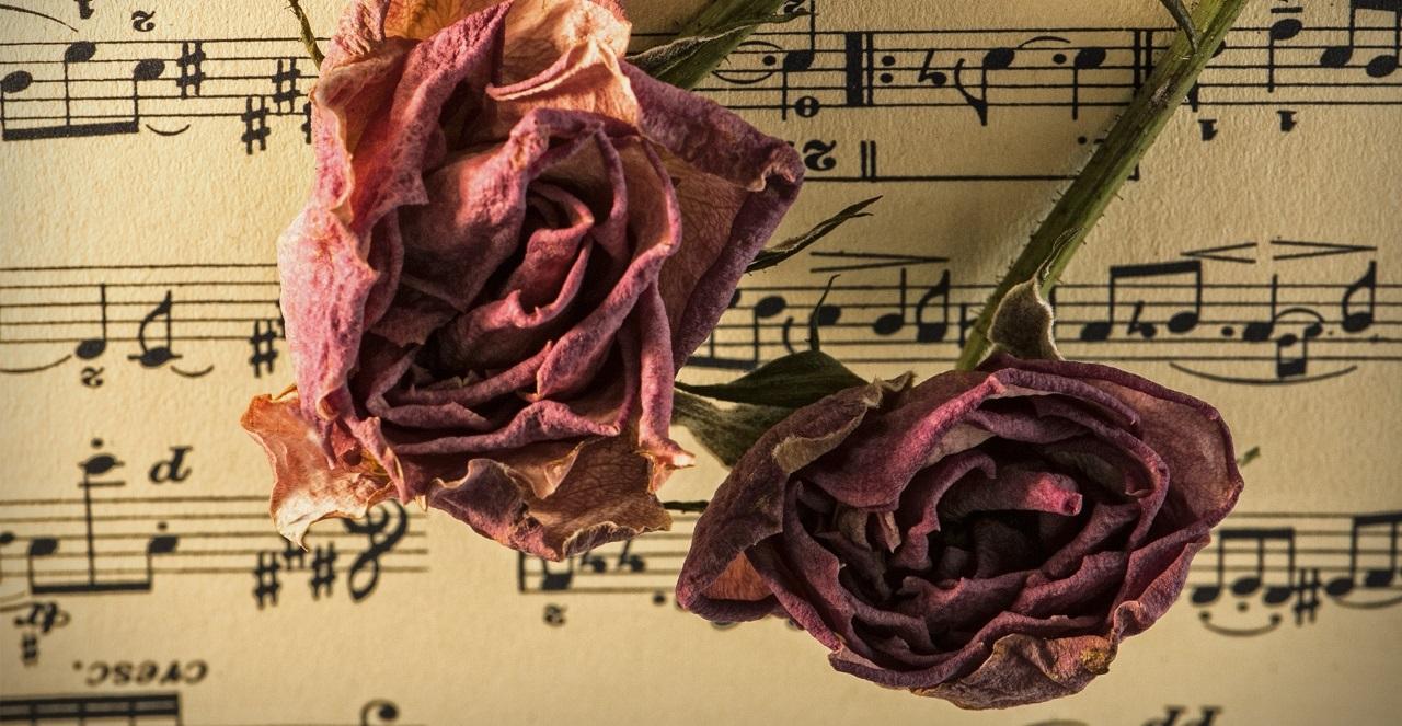 Cerveau, neurosciences et musicothérapie : retrouver une identité