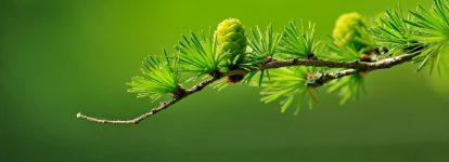Espoir, chagrin… Les enfers puis nouvel Espoir